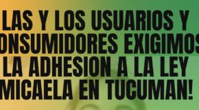 NOSOTRXS APOYAMOS LA ADHESIÓN DE LA PROVINCIA DE TUCUMÁN A LA LEY MICAELA